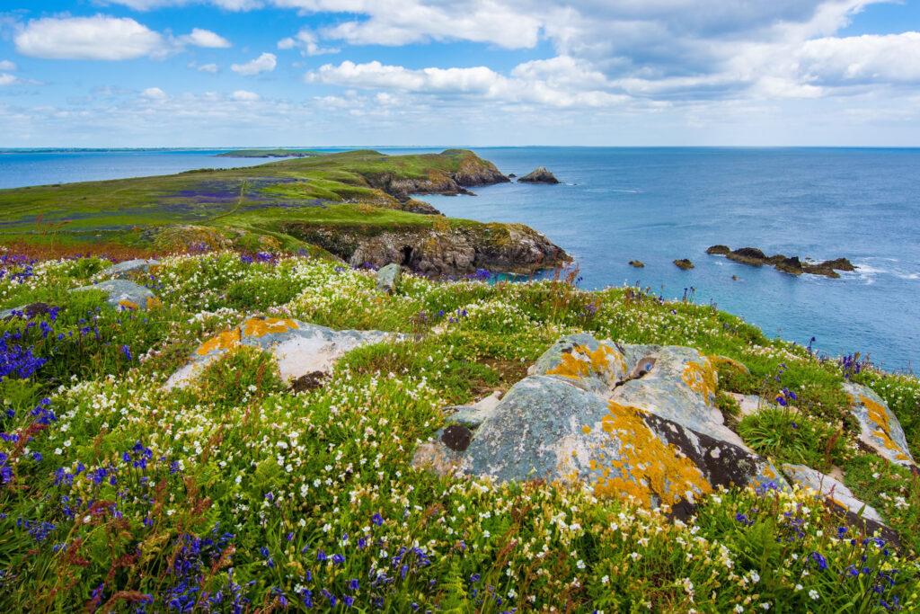 Irlanda, isola smeralda