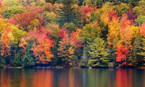 Il Canada riapre ai viaggiatori: il foliage vi aspetta!